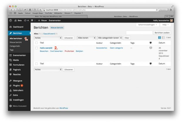 03. WordPress handleiding - Berichten