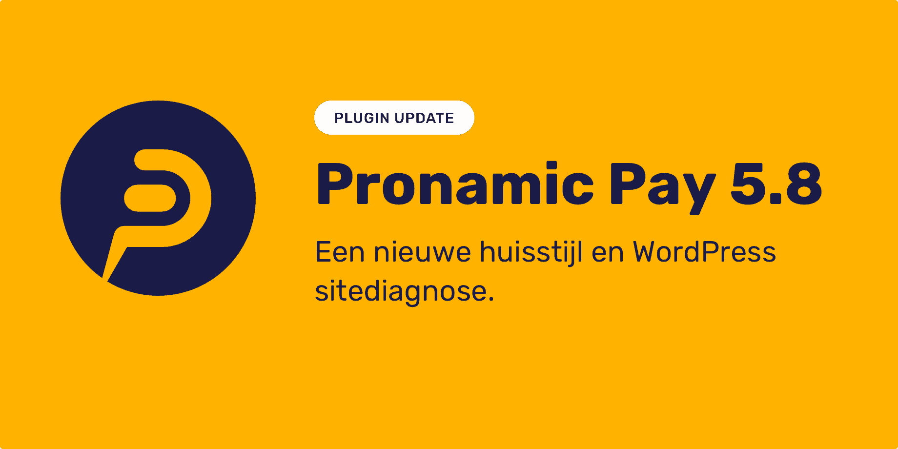 Banner Pronamic Pay 5.8 NL